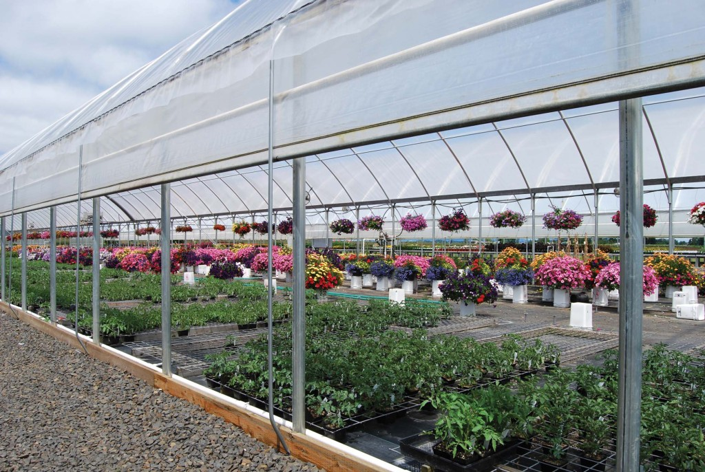 Efficient Greenhouse Design - Greenhouse Product News on