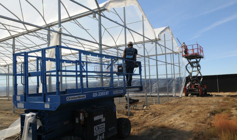 How To Build A Greenhouse For Cannabis Production Greenhouse Product News