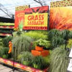 <strong>Grass Sabbath display at Pacific Plug &#038; Liner</strong><br />