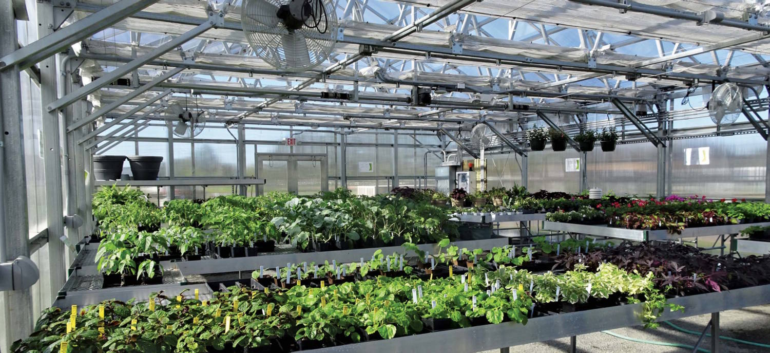 Outstanding Gearing Up A Greenhouse For Summer Greenhouse Product News Home Interior And Landscaping Dextoversignezvosmurscom