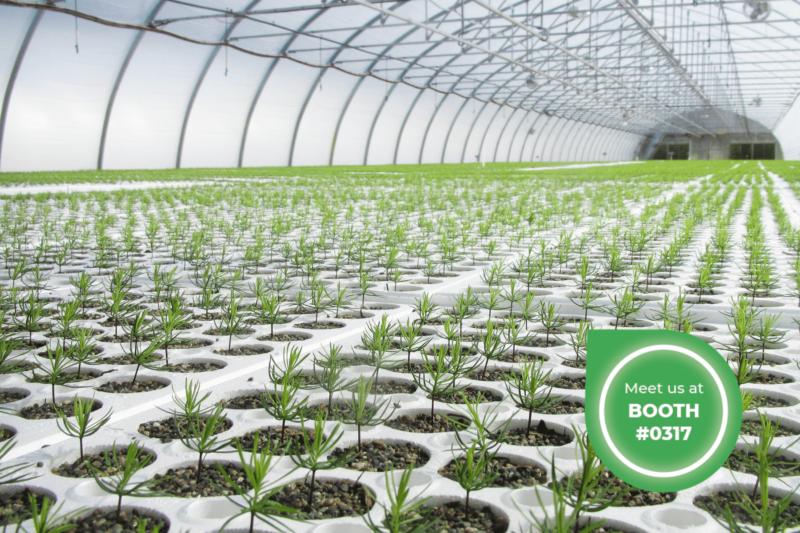 Harnois - choosing a greenhouse engineer